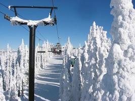 dia fantástico para esquiar foto