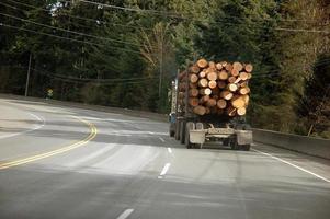 caminhão de log na estrada foto