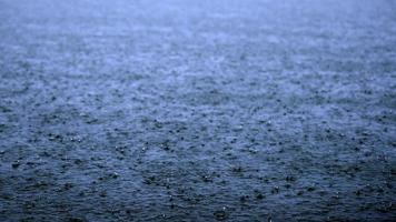 lago da chuva foto