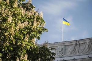 manhã de verão em kiev