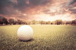 bola de golfe em um campo ao pôr do sol foto