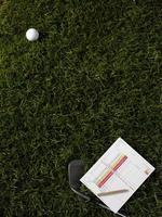 bola de golfe e ferro na grama verde foto