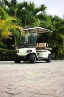 carrinho de golfe foto