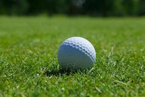 grama bola de golfe foto