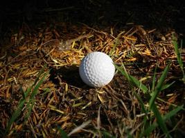 bola de golfe perdida em bruto foto
