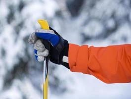 poste de mão e esqui foto