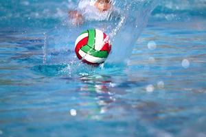 pólo aquático foto