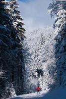 jovem esqui cross-country foto