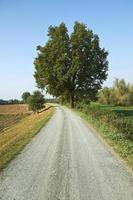caminho de bicicleta foto