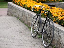 bicicleta vintage sobre canteiro com flores amarelas foto