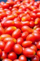 estupro de tomate cereja foto