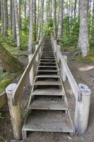 escada de madeira na pista de caminhada