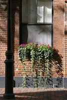caixa de janela de boston