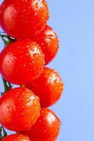 tomates maduros de videira cereja foto