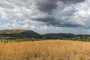 Parque Nacional Pilanesberg. África do Sul. 29 de março de 2015 foto