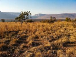 reserva natural de loskop