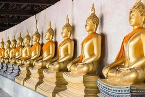 estátuas de Buda no templo em ayutthaya