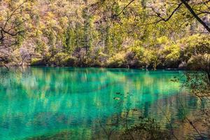 bela lagoa no parque nacional de jiuzhaigou foto