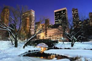 um panorama do central park em new york city durante o inverno foto