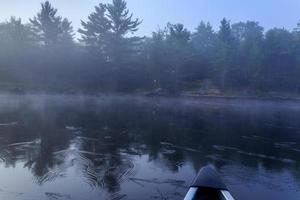 névoa à frente na água foto