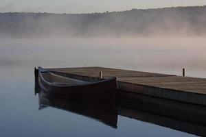 névoa da manhã foto