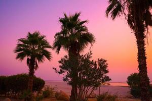 nascer do sol rosa mágico ao longo da costa do mar morto foto