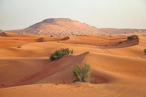 deserto de areia vermelha foto