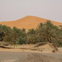 erg chebbi em marrocos foto