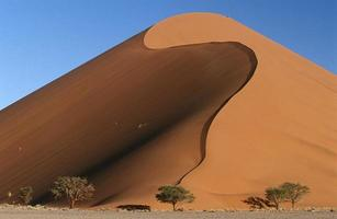 deserto de namib foto