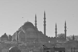 mesquita foto