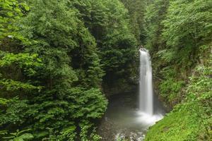 cachoeira na selva