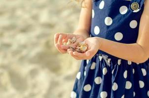 mãos de criança segurando conchas do mar. foto