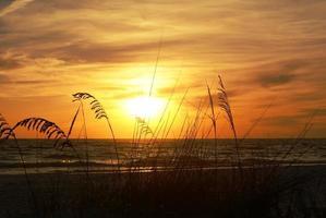 pôr do sol da flórida