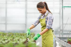 jovem botânico feminino