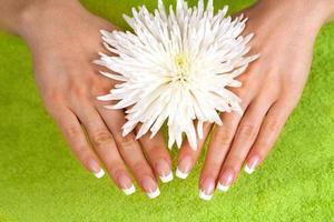 lindas mãos femininas com manicure francesa perfeita foto