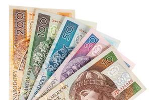 zloty polonês dinheiro foto