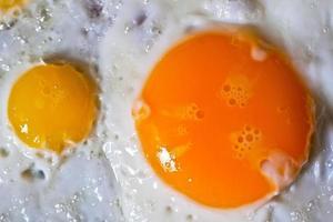 codorna frita e ovos de galinha foto