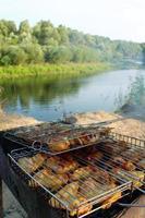 churrasco de carne de frango cozido na natureza foto