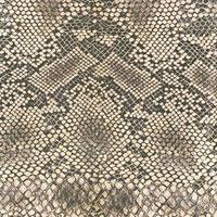 padrão de pele de corpo de animal selvagem foto