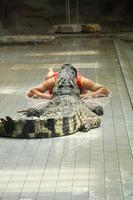 homem com cabeça dentro de crocodilo foto