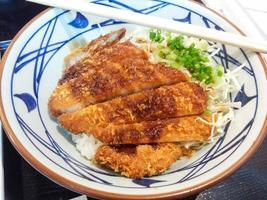 tonkatsu foto