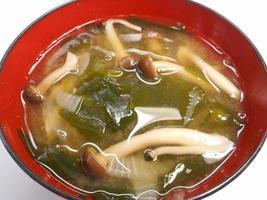 sopa de missô de algas foto