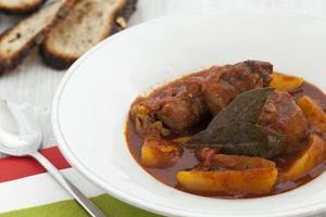 goulash de porco húngaro foto