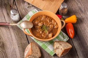 sopa de goulash. foto