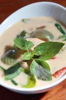 delicioso tailandês panang frango ao curry foto
