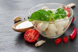 ingredientes da salada caprese foto