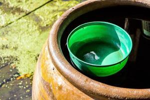 tigela de água de plástico no frasco de água foto