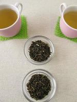 chá verde queridinho