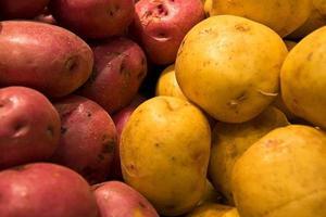 pomme de terre foto