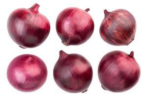 cebolas vermelhas foto